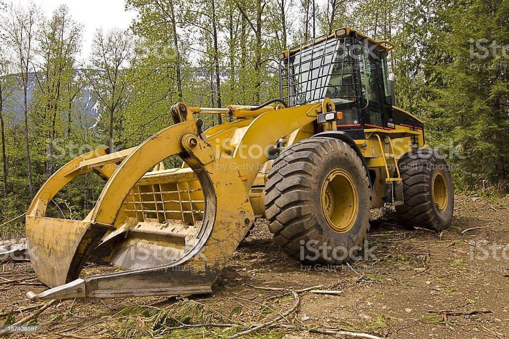Log Skidder in forest stock photo
