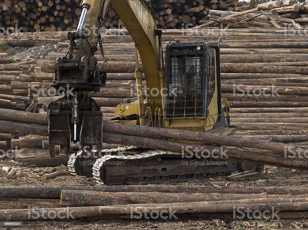 Log sorting royalty-free stock photo