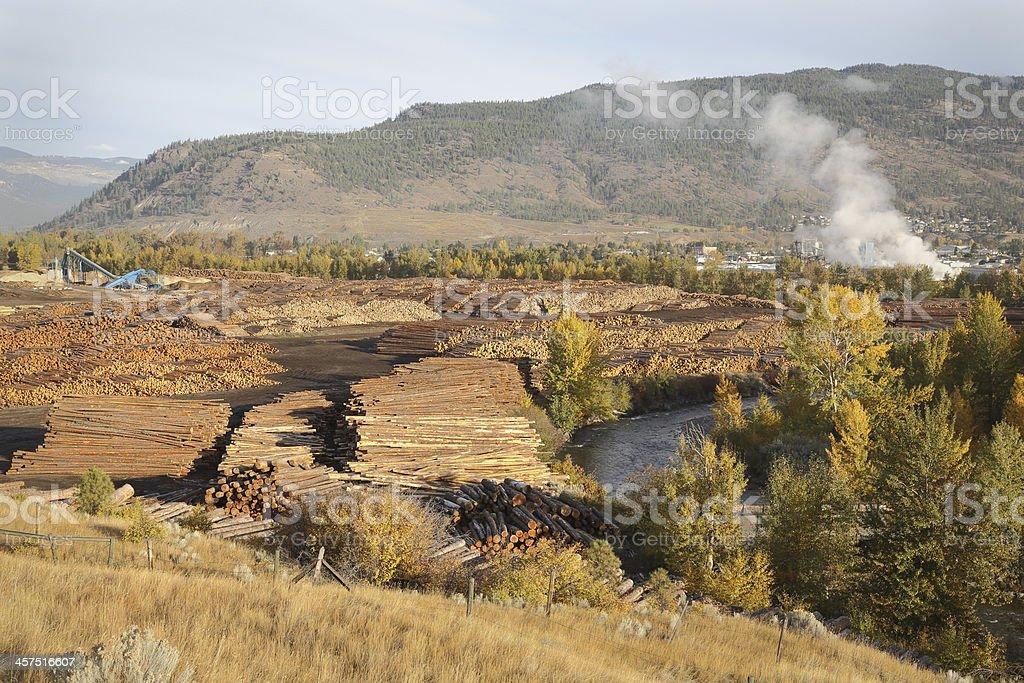 Log Stacks, Lumber Mill, Merritt BC royalty-free stock photo