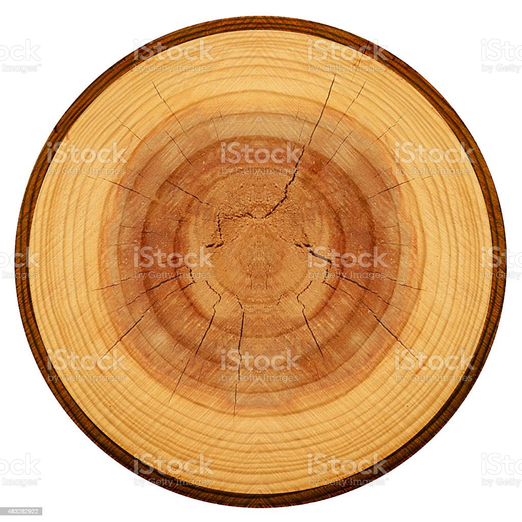 Log Wood stock photo