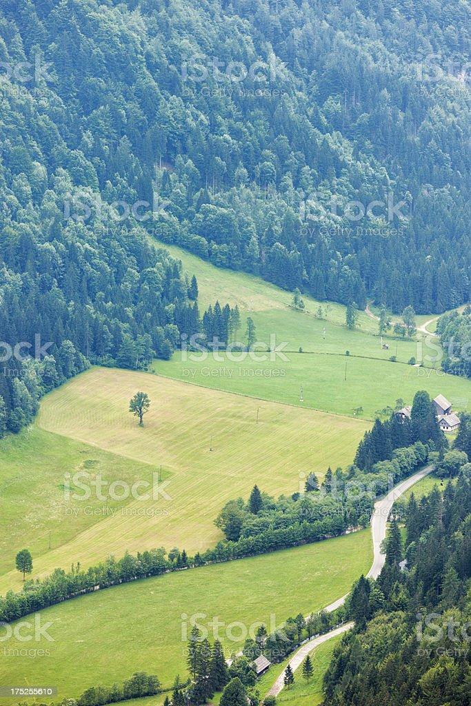 Logarska valley royalty-free stock photo