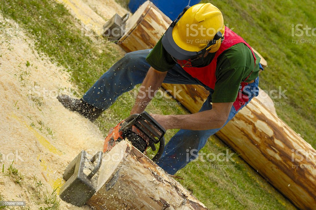 Logger in action royalty-free stock photo