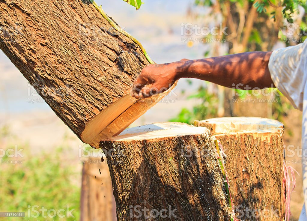 Logger  man cutting wood royalty-free stock photo