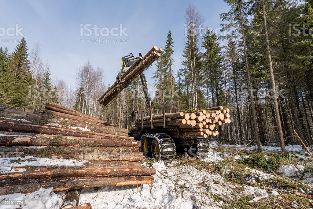 Logger with robotic arm lifts logs in winter woods stock photo