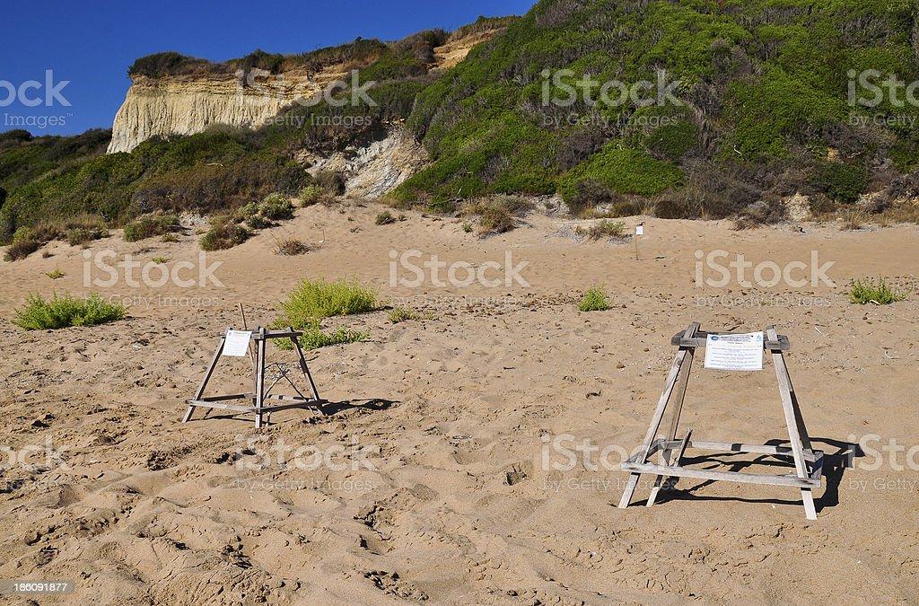 Loggerhead sea turtle nesting site royalty-free stock photo