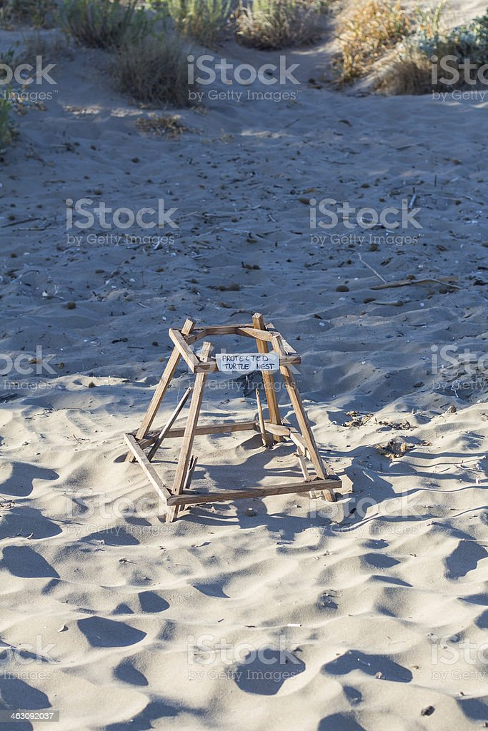 Loggerhead sea turtle nesting site royalty-free stock photo