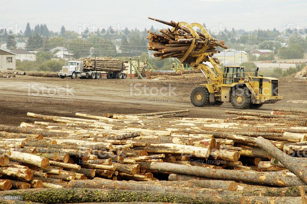 Logging Equipment 8 royalty-free stock photo