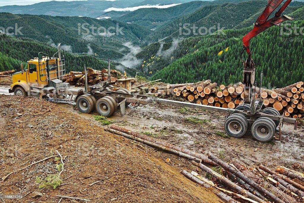 Logging Hooking Up Log Trailer stock photo