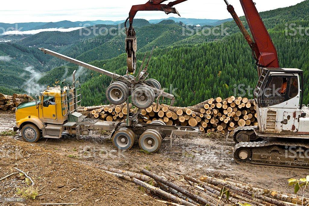 Logging Lifting Log Truck Trailer stock photo