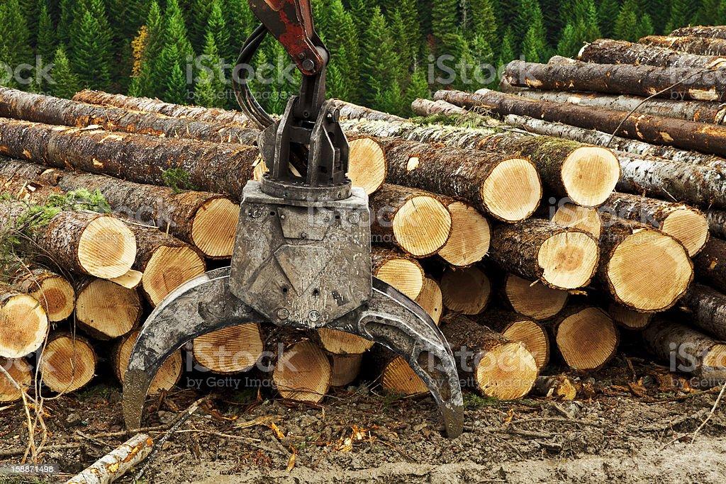 Logging Loader Grappler stock photo