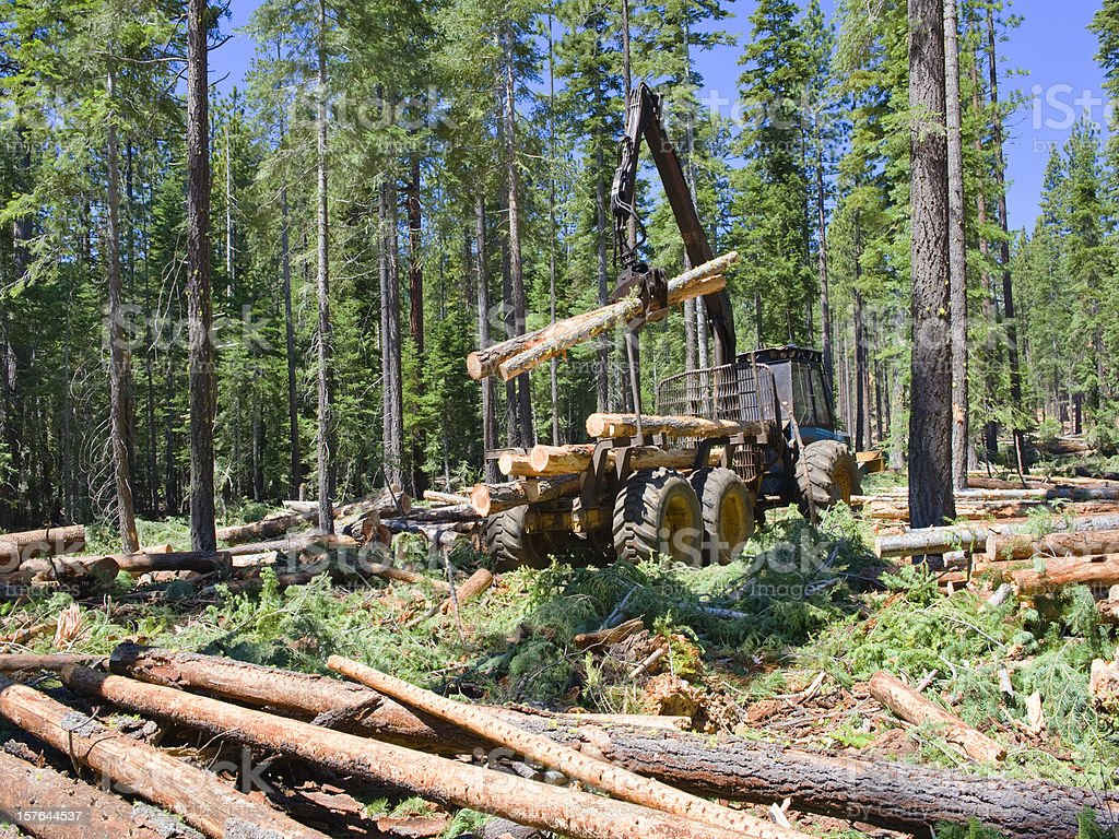 Logging Loader stock photo