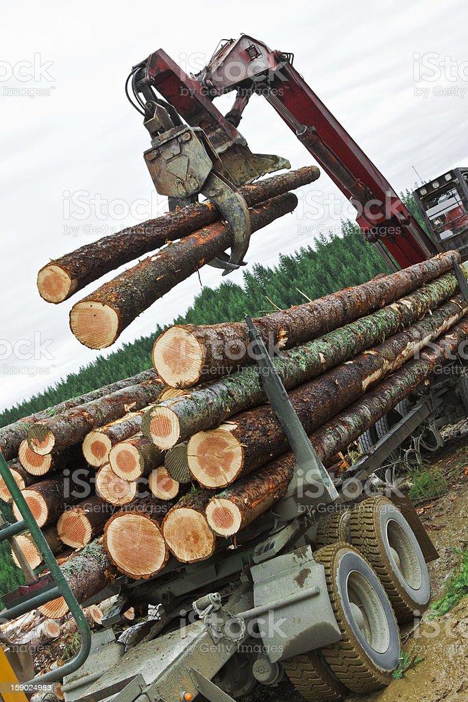 Logging Loading Tilted stock photo