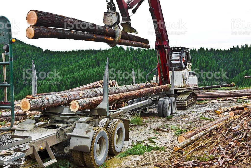 Logging Loading Trailer stock photo