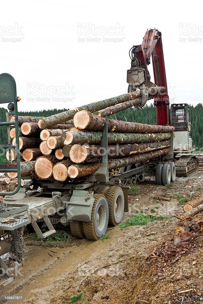 Logging Loading Truck stock photo
