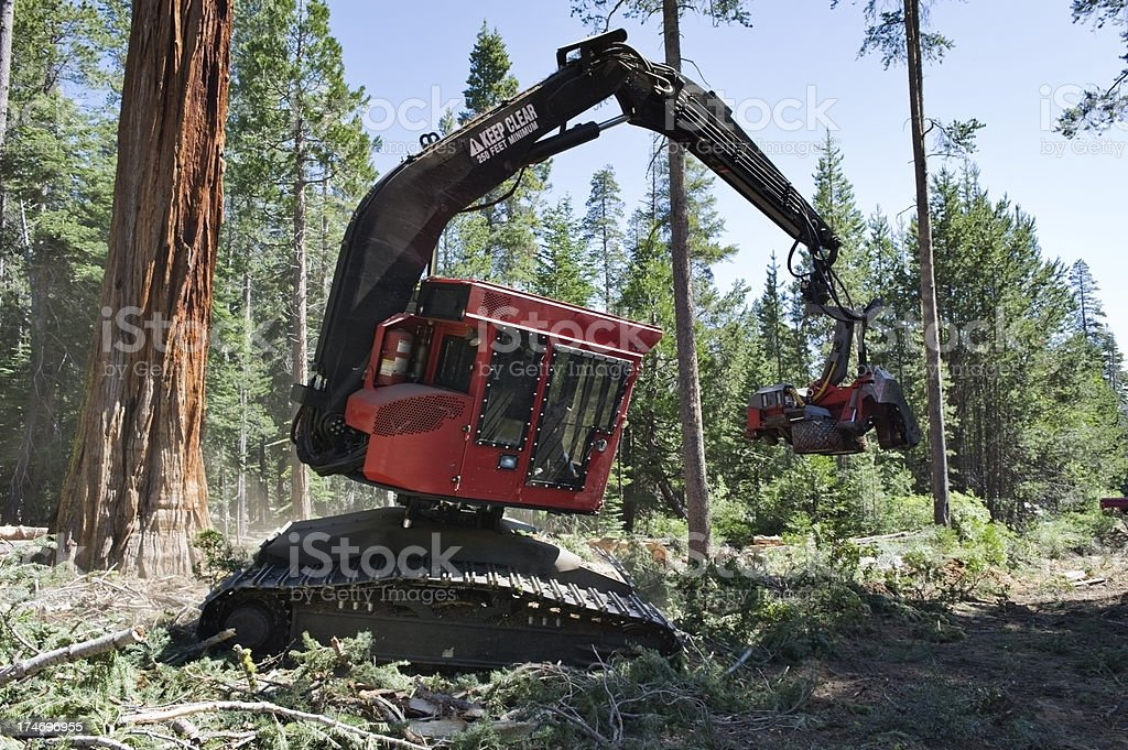 Logging Machine stock photo