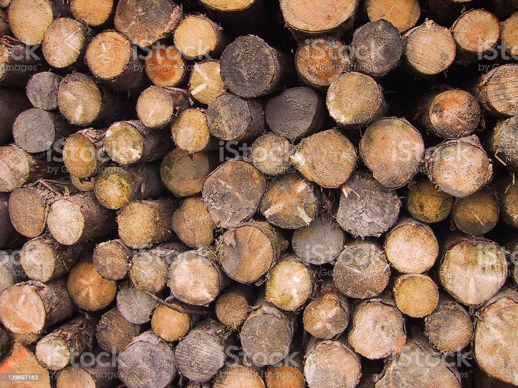 Logging stock photo