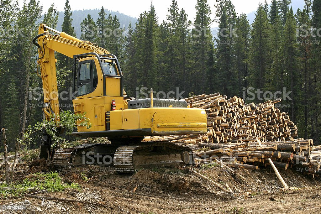 Logging # 5 stock photo