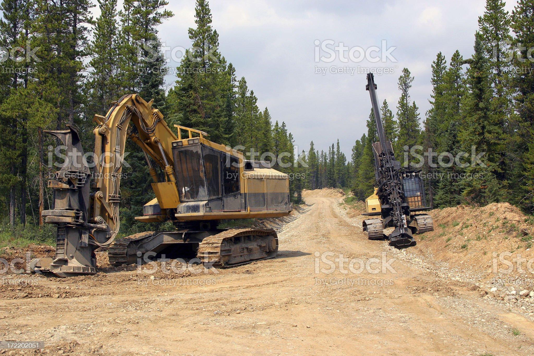 Logging # 2 royalty-free stock photo