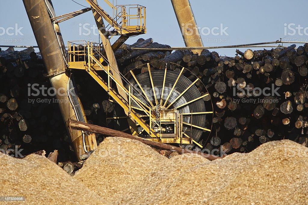 Logging Pile royalty-free stock photo