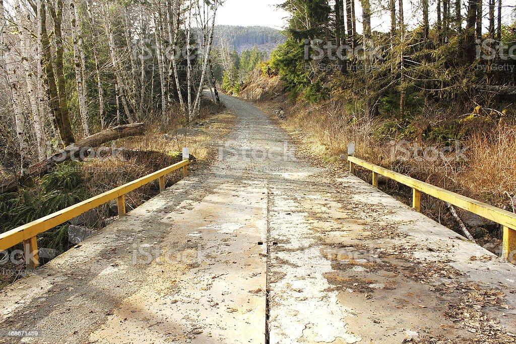 Logging Road royalty-free stock photo
