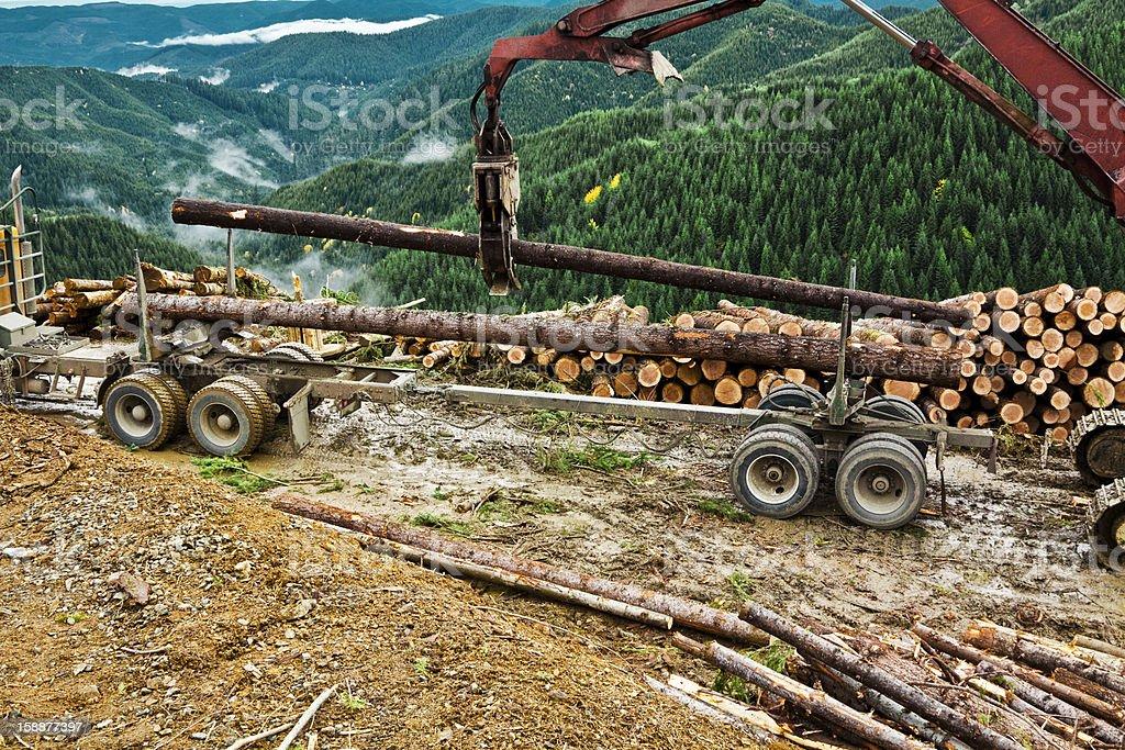 Logging Start Loading Logs stock photo