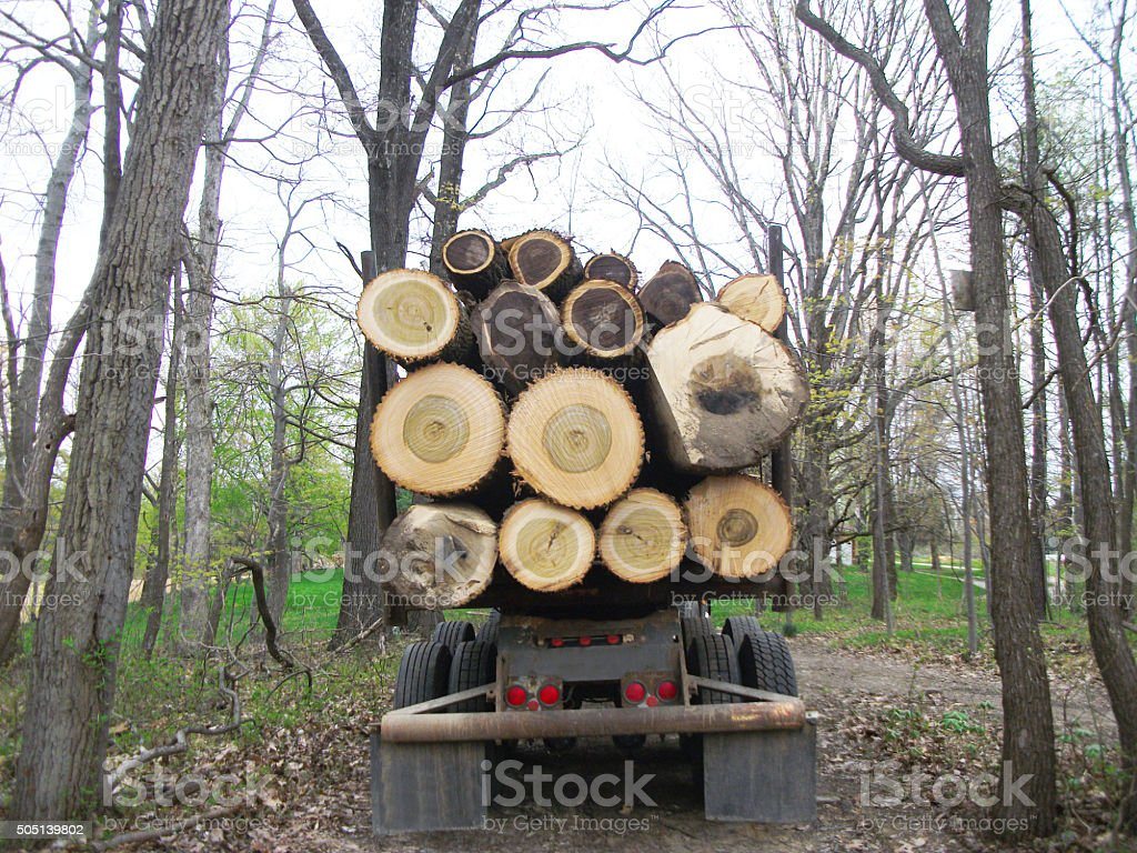Logging Timber Truck stock photo