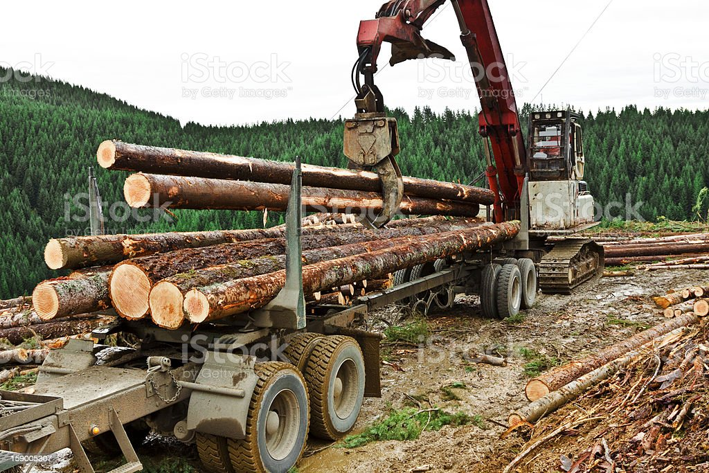 Logging Truck Continued Loading stock photo