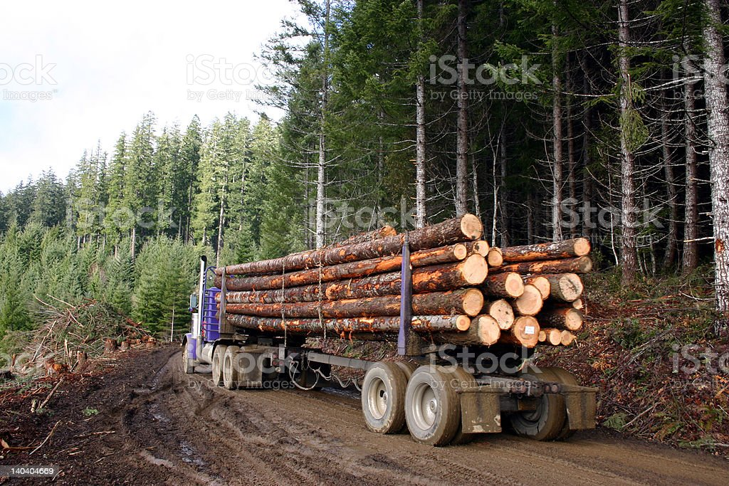 logging truck stock photo