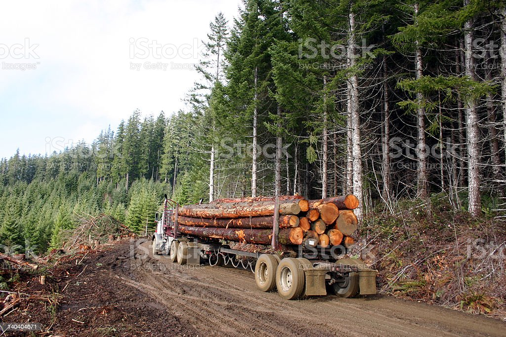 logging truck with load stock photo