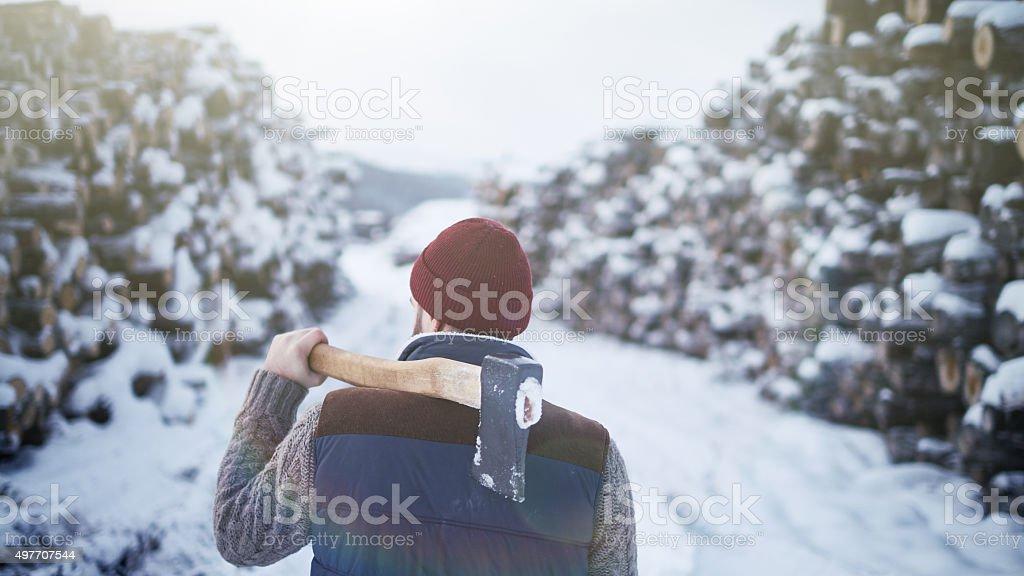 Logging worker stock photo