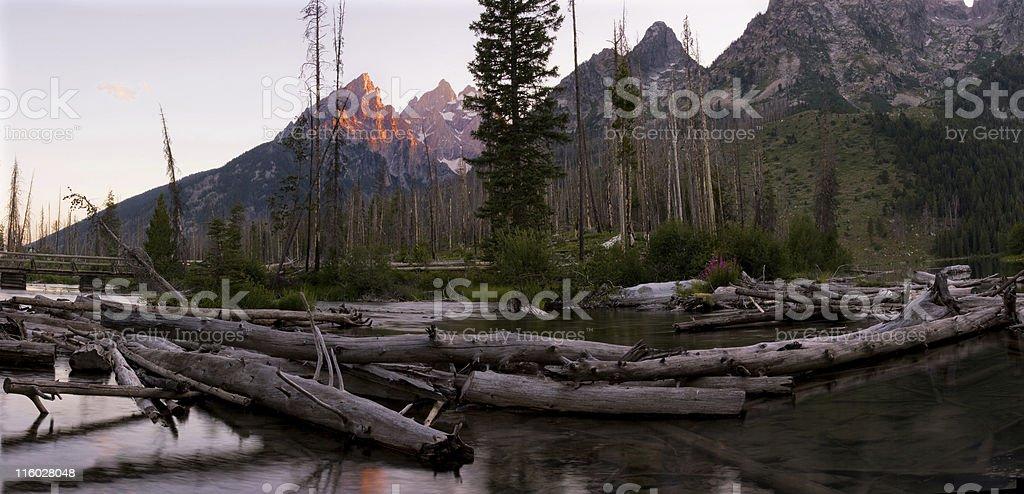 Logjam on Teton River stock photo