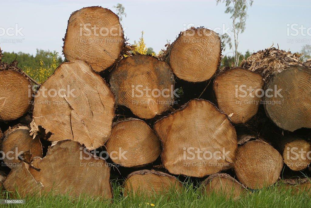 Logs 1 royalty-free stock photo