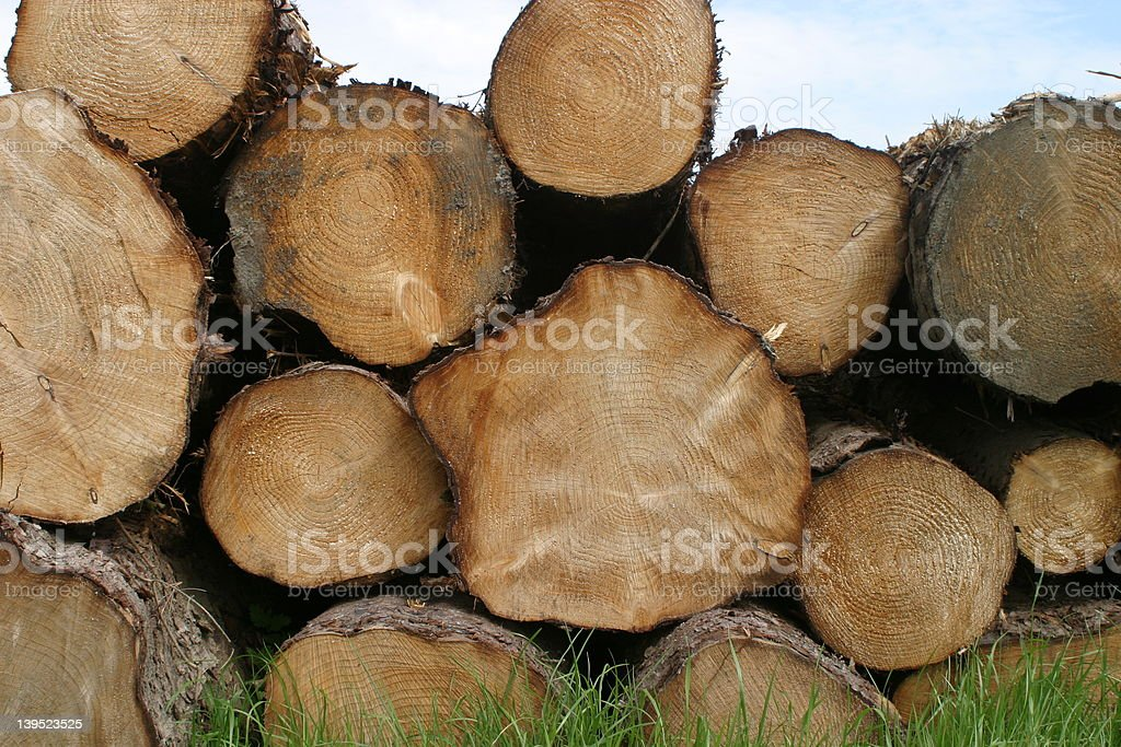 Logs 3 royalty-free stock photo