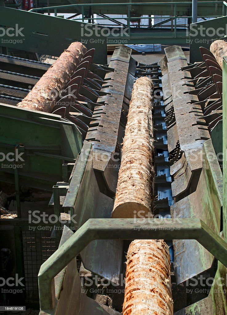 Logs of wood being cut in saw mill stock photo