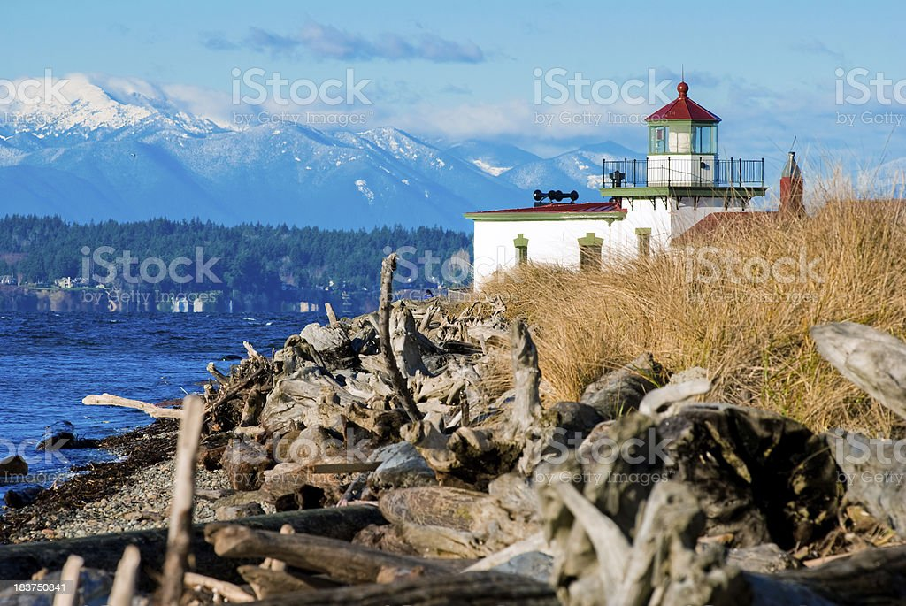 Logs on beach at West Point Lighthouse in Seattle, WA stock photo