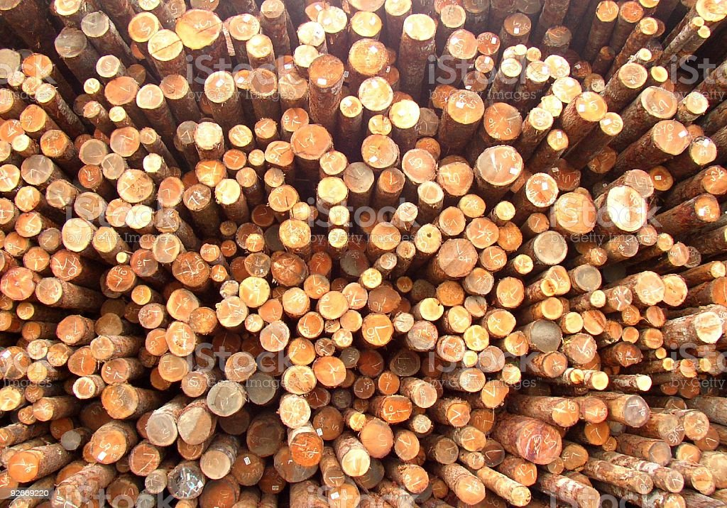 Logs piled high royalty-free stock photo