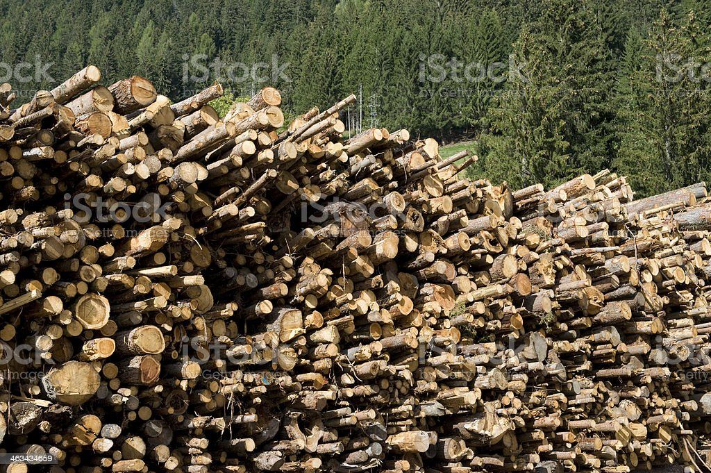 logs piled royalty-free stock photo