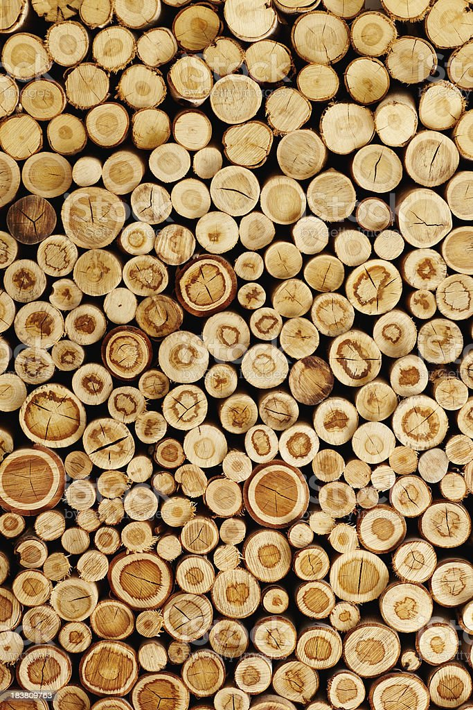 Logs stacked together stock photo