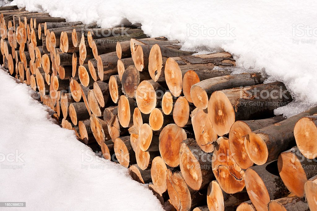 Logs under the snow royalty-free stock photo