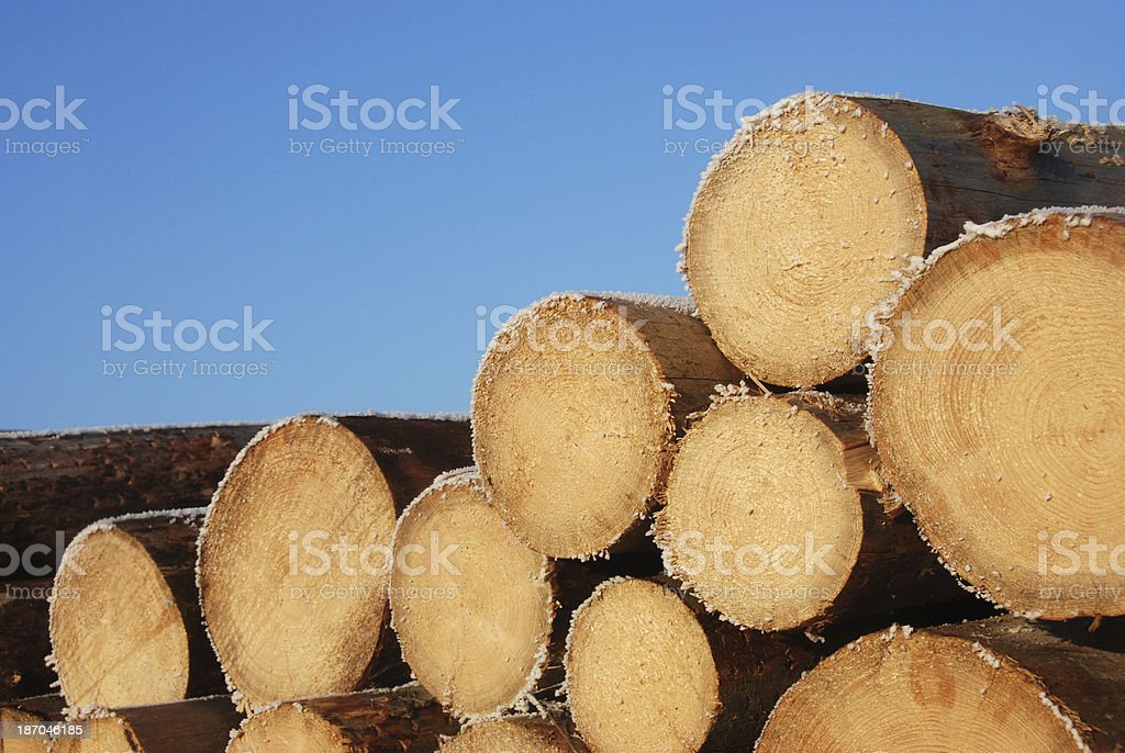 Logs with hoarfrost royalty-free stock photo
