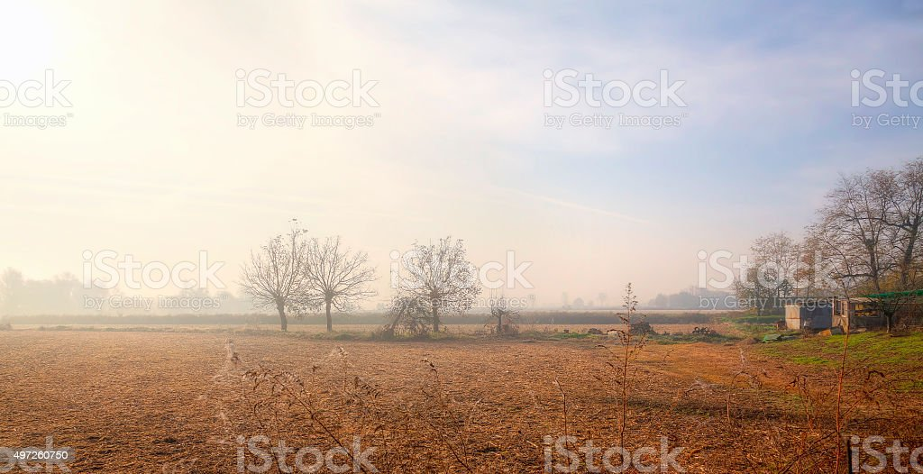 Lomellina Countryside, wintertime. Color image stock photo