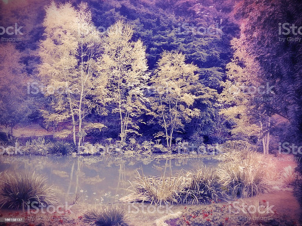 Lomo Infrared Trees and Pond stock photo