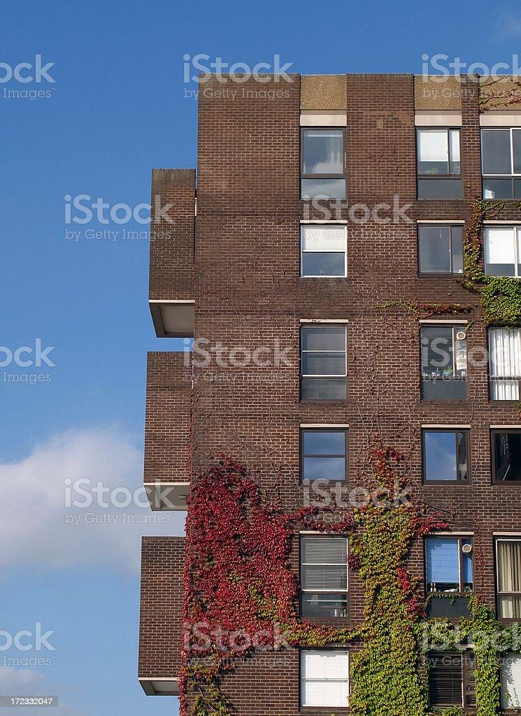 London apartment royalty-free stock photo