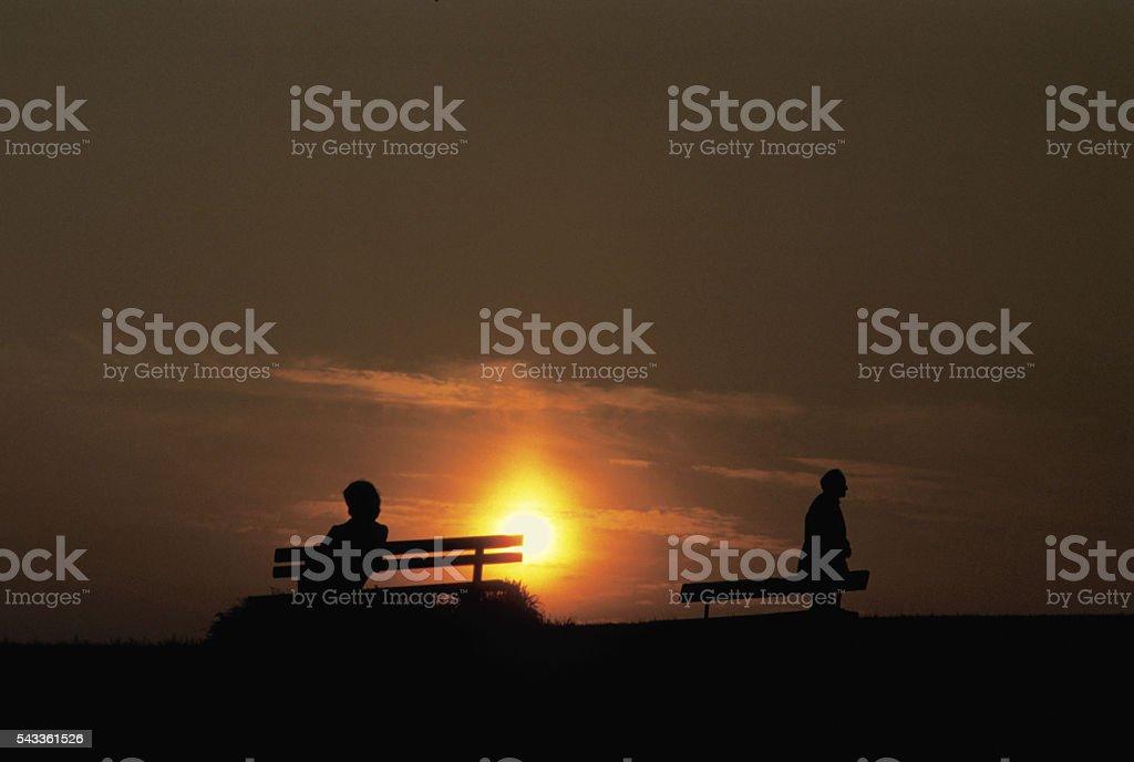 london. camden. hampstead heath. parliament hill fields.photography &©david martyn hughes stock photo
