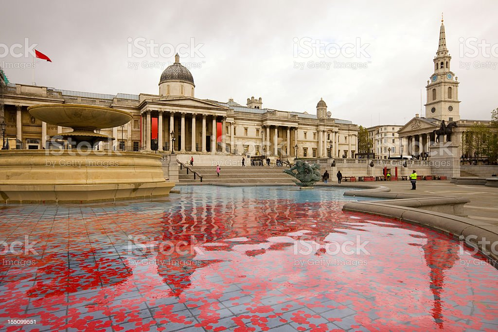 London England Trafalgar Square with Red Poppies during Remembrance Day stock photo