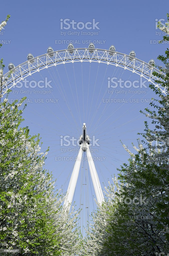 London Eye on the South Bank, Spring royalty-free stock photo