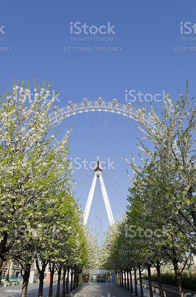 London Eye, Spring royalty-free stock photo