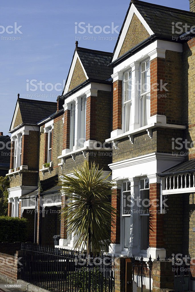 London Terraced Houses with Palm Tree stock photo