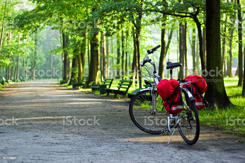 Lone bike on a road in a green forest royalty-free stock photo