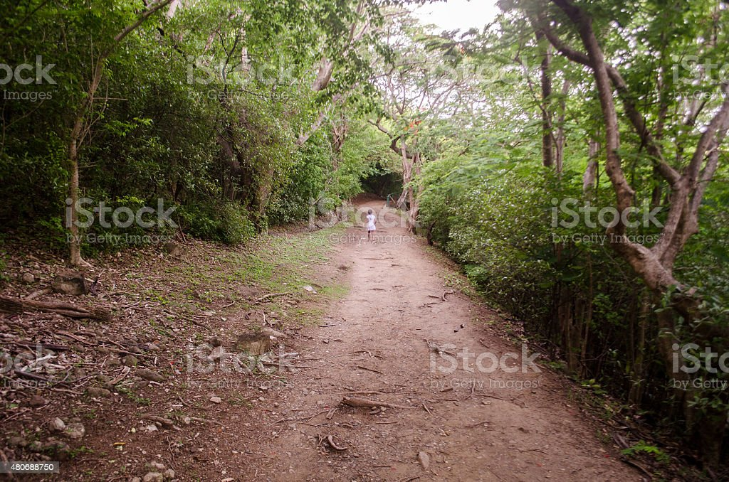 lone child in woods among thick trees walking stock photo